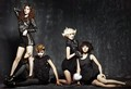 Miss a for Arema Homme - miss-a photo