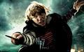 Ron Weasley - HP7 p2