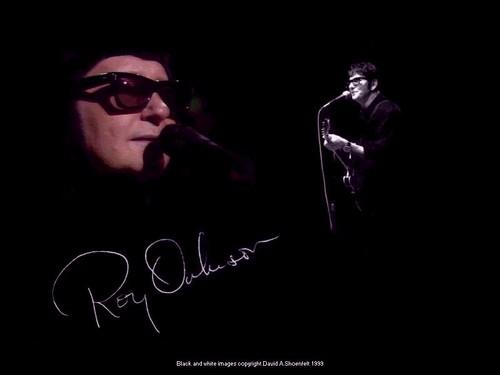Roy Orbison fondo de pantalla 1