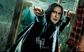 Severus Snape - HP& p2 - the-guys-of-harry-potter wallpaper