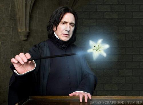 Severus Snape - Undying Liebe