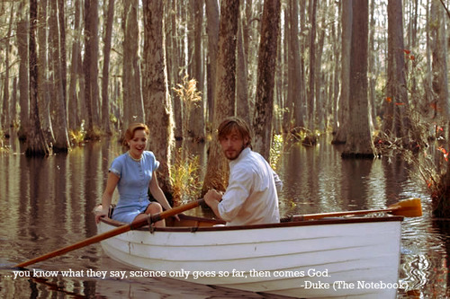 The Notebook wallpaper possibly containing a dugout canoe entitled The Notebook