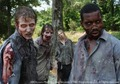 the walking dead <3 - the-walking-dead photo