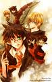 アニメ Potter