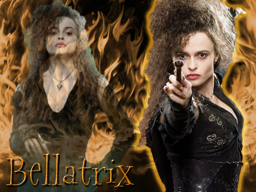 Bellatrix Lestrange fond d'écran called Bellatrix