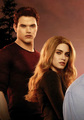 Breaking Dawn Part 1 Comi Con Poster [HQ] - emmett-and-rosalie photo