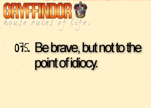 粉丝 Art - Gryffindor