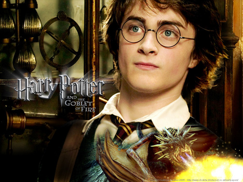 Harry Potter And The Deathly Hallows Part 2 karatasi la kupamba ukuta entitled HarrY Potter. From Young to Old