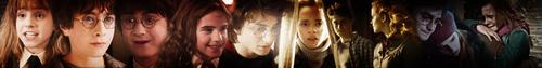Harry&Hermione banner