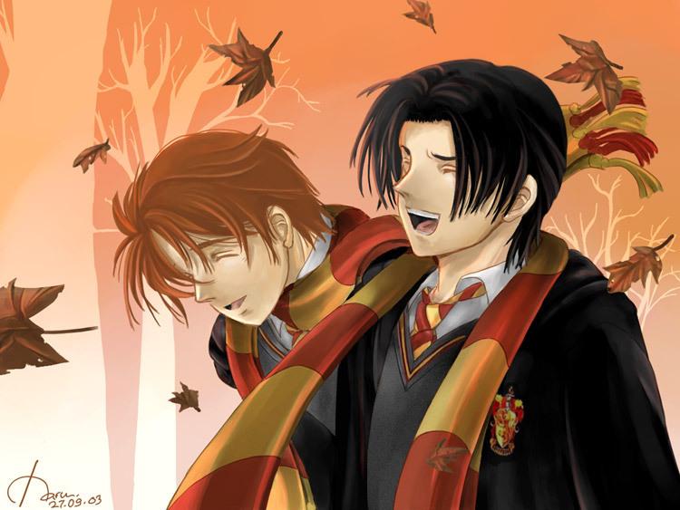 Harry Potter Group