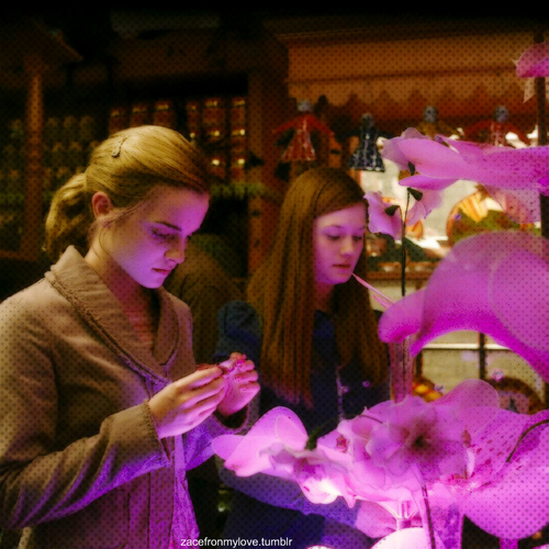 Hermione&Ginny