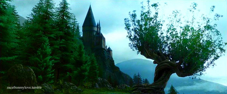 Home Hogwarts Harry Potter Fan Art 24106392 Fanpop