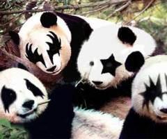 KISS wallpaper entitled Kiss pandas