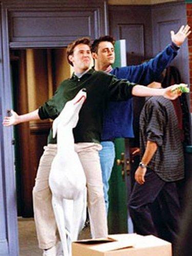 Matt as Joey { le 블랑 as Tribbiani }