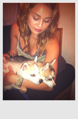 Miley - New Twitter Pictures
