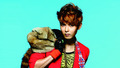 super-junior - Mr. Simple Wallpaper wallpaper