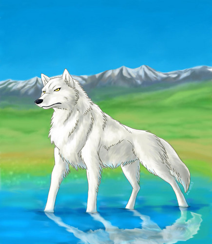 Another pic of me as a wolf.