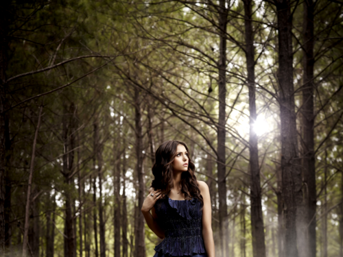 Nina Dobrev wallpaper containing an american white birch, a sitka spruce, and a beech entitled Nina Dobrev Wallpaper ❤