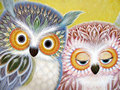 Owls by K. Chin - owls photo
