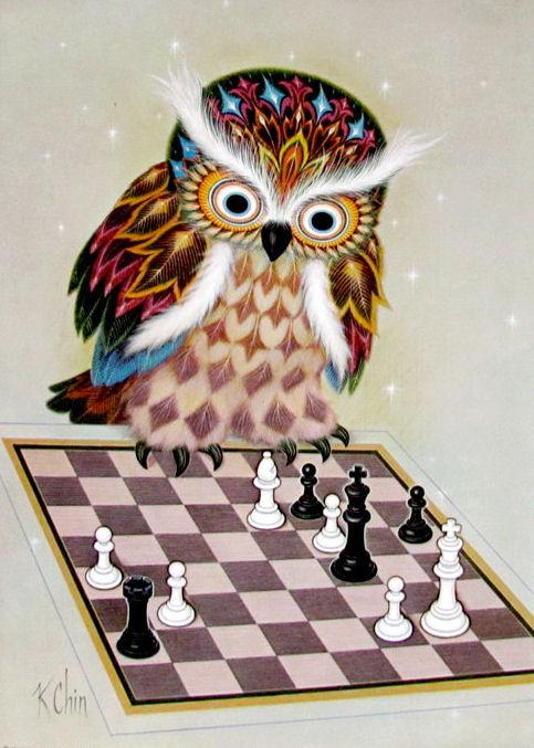 Owls par K. Chin