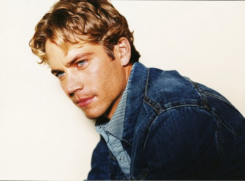 Photoshoot Session 30 - paul-walker Photo