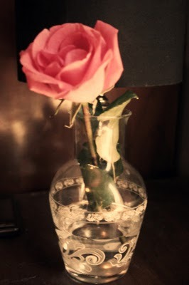 hoa hồng are dreamy