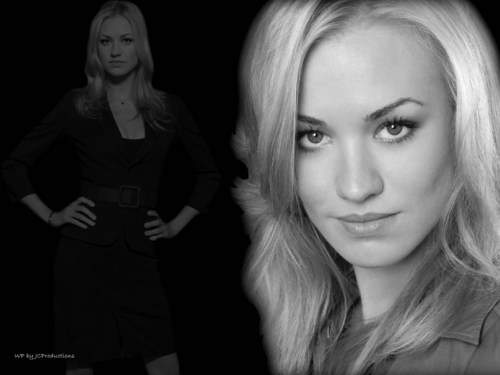Chuck images Sarah Walker HD wallpaper and background photos