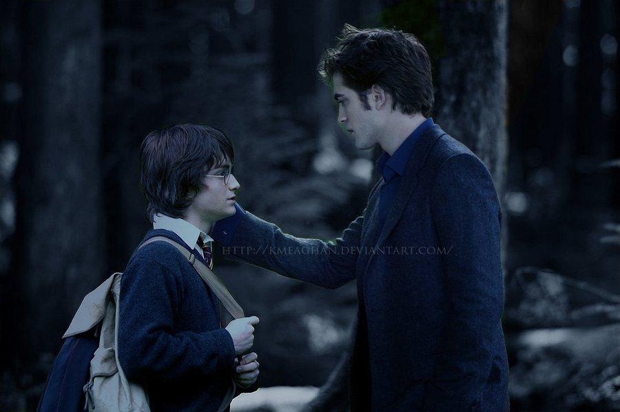 Secret Meeting - Edward Cullen and Harry Potter Fan Art