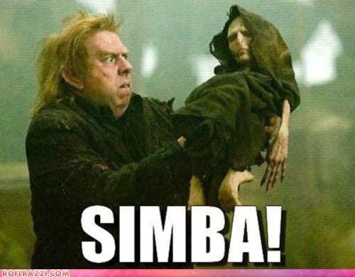Simba...?