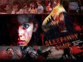 Sleepaway Camp - horror-movies wallpaper