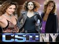 Stella Bonasera - csi-ny wallpaper