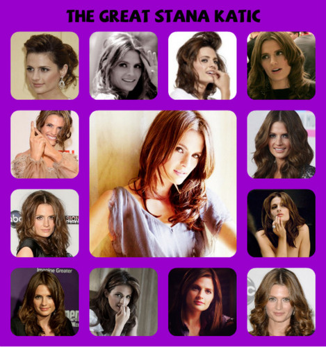 The lovely Stana Katic