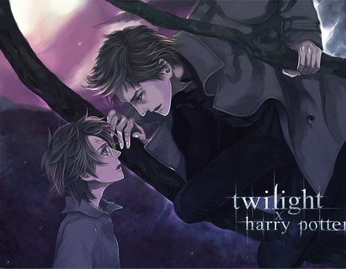 Twilight x हैरी पॉटर