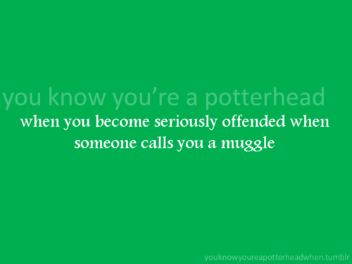 당신 Know You're a Potterhead When...