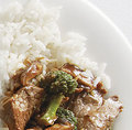beef & broccoli  - chinese-food photo