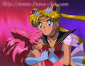 chibimoon and sailormoon