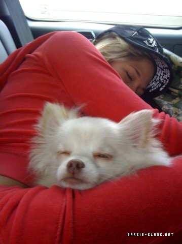 kelly kelly and her dog