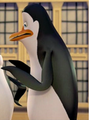kowalski penguin!!!!!!!!!!!!!!!!!!!!!!!!