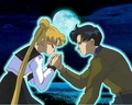usagi and darien