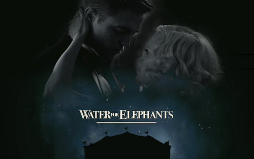 water for elephnats
