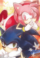 .:Sonamy:. - sonic-couples photo