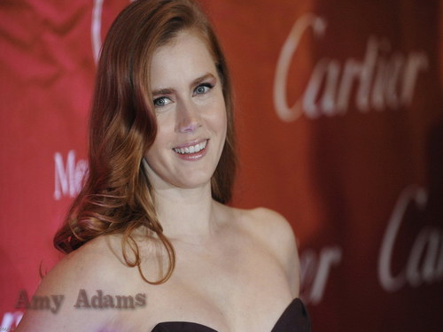 Amy Adams wallpaper with a portrait called Amy Adams