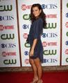 CBS TCA 2011
