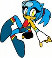 Cece's new look! - cece-the-hedgehog photo