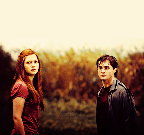 Harry and Ginny - DH Part 2