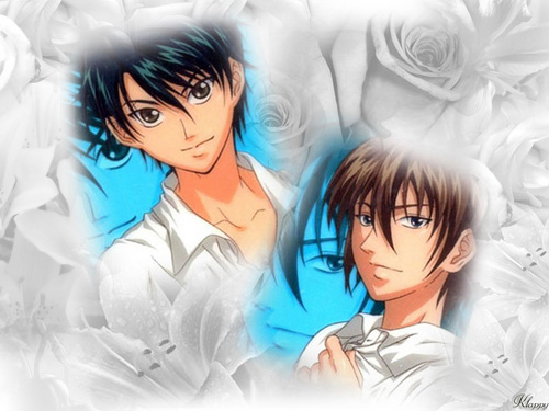Prince of Tennis wallpaper titled Echizen & Fuji