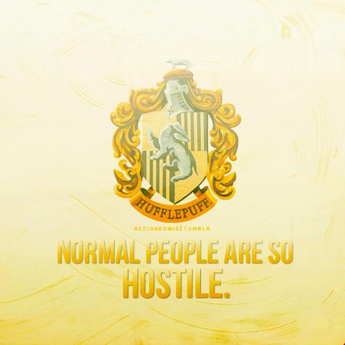 Hogwarts House Rivalry! দেওয়ালপত্র entitled অনুরাগী Art - Hufflepuff
