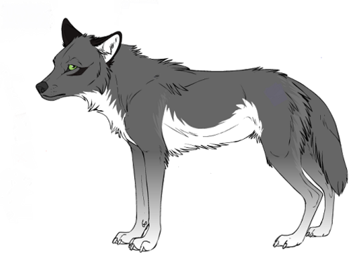 Katelover812 as a wolf