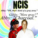 NCIS (TV Spot 20 in 20) - ncis_addict_87 icon
