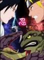 Naruto vs. Sasuke - naruto-shippuuden photo